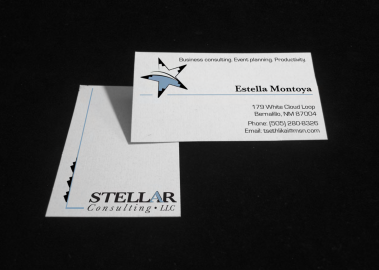 Business Card - Stellar Consulting 2012